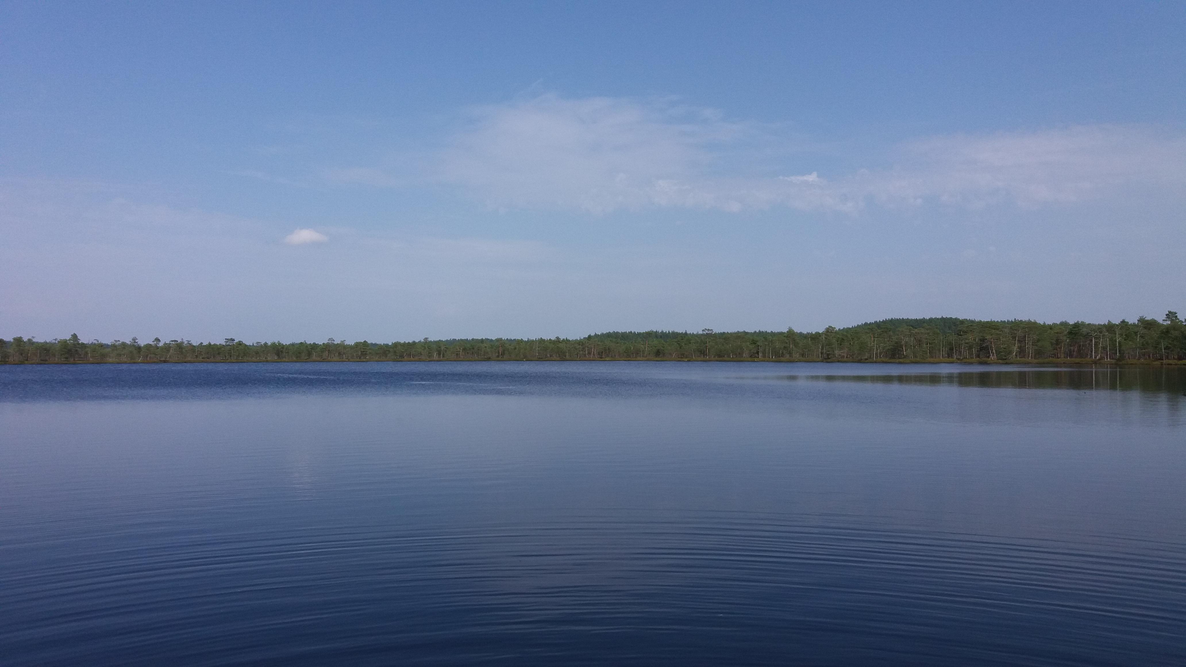 Loodusmatk 2017 (Meenikunno maastikukaitsealale) 9